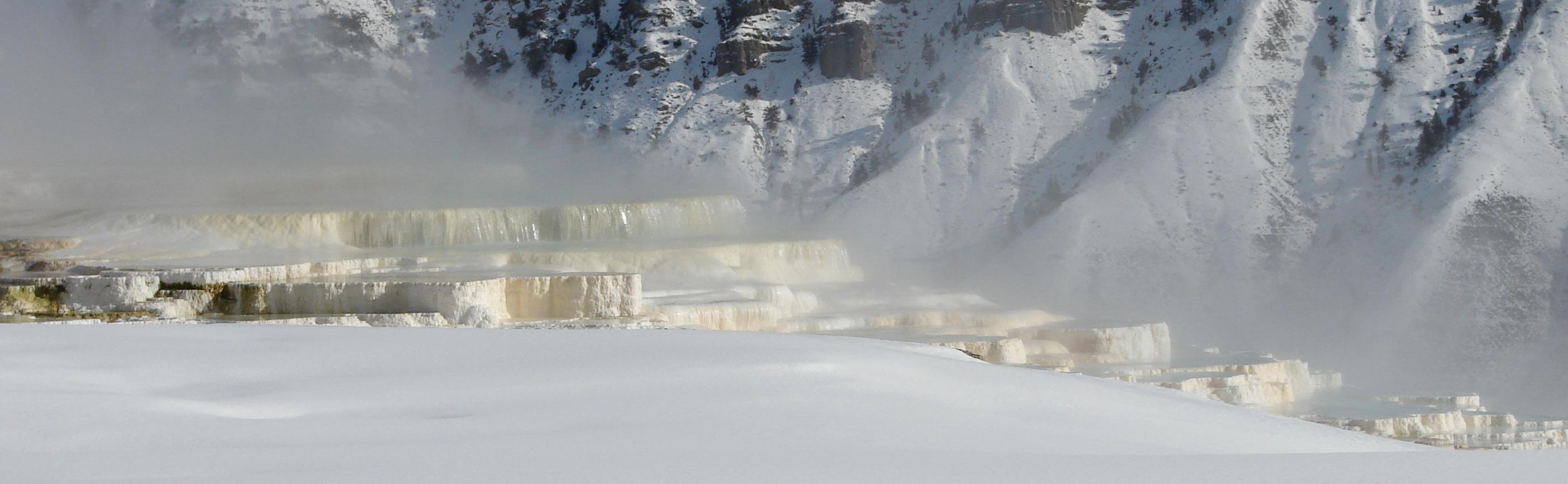 Mammoth Hot Springs | Carl Moore LMT